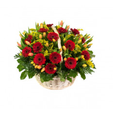 Basket Arrangement With Gerberas And Tulips (Refined)