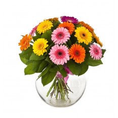 Bouquet Of Multi-Coloured Gerberas (Refined)