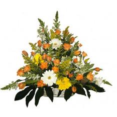 Allegria arancione (piccola)