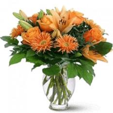 Lilium arancione (piccolo)