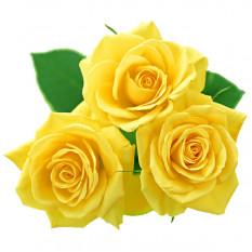 Trio di rose gialle (piccole)