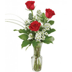 Trio di rose rosse (piccolo)